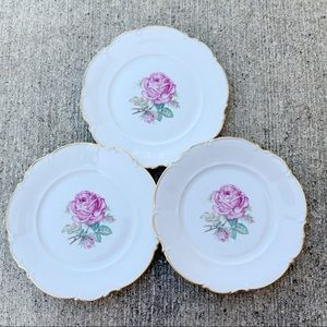 hutschenreuther selb the dundee rose dinner plates